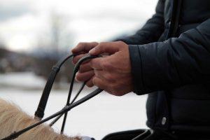 Ruhige Reiterhände durch einfache Übungen