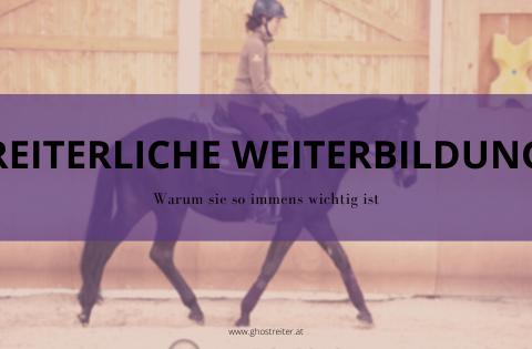 Besser reiten: Reiterliche Weiterbildung