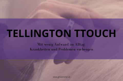 Gesunde Pferde durch Tellington TTouch