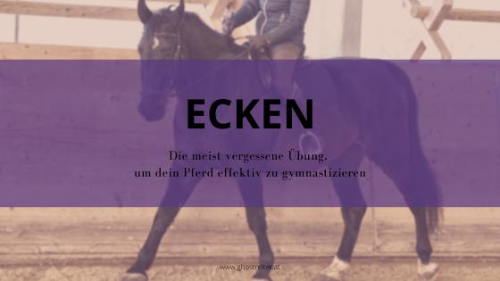 Pferd gymnastizieren Übung